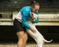 HOLLI BOB ALL ABOUT LOVE - VP1, BIS Puppy - Somogyiová Denisa